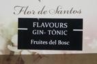 Flavours - G&T ( Frutas del Bosque )